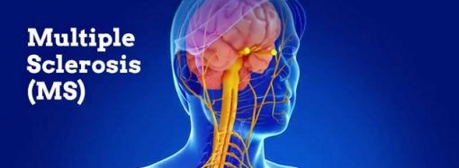 Adhesion Molecules associated with Neurological Disorders