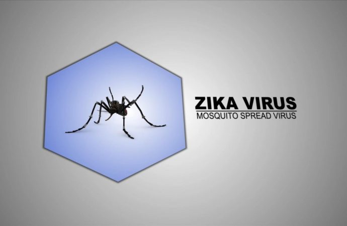 Zika Virus Crosses the Placenta and Cause Microcephaly in Mice