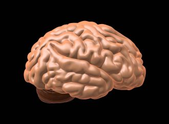 Maintaining Healthy Brain Slows Neurodegenerative Diseases