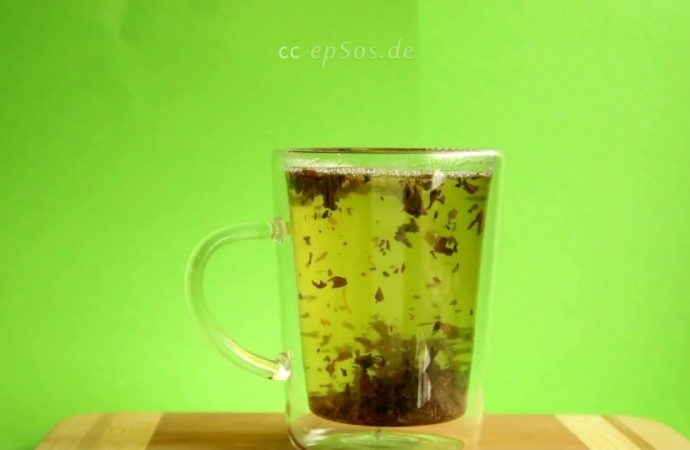 Green Tea Improves Cognitive Skills in People with Down Syndrome