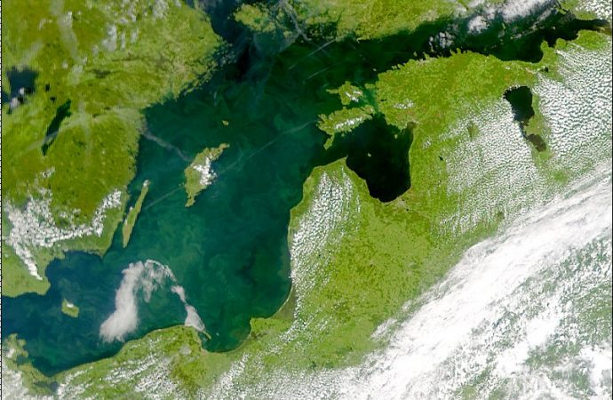 Changes in Eating Habits can make Baltic Sea Better