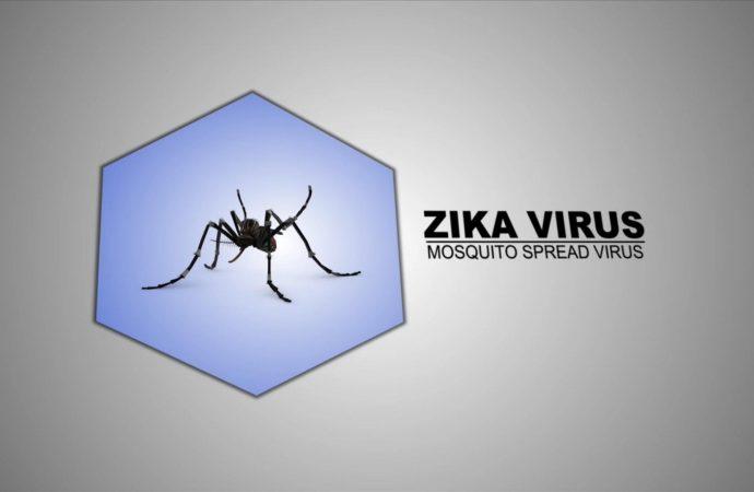 Developing Effective Zika Vaccine in Animals