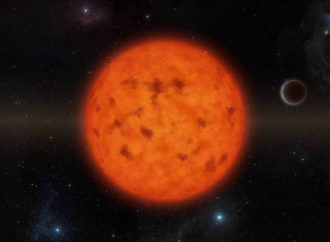 Discovery of an exoplanet in its 'early childhood'